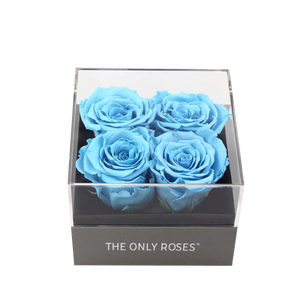 Blue Preserved Roses | Small Square Classic Grey Box - The Only Roses