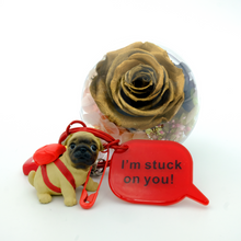 Load image into Gallery viewer, Gold Preserved Rose | English Bulldog Keychain - The Only Roses