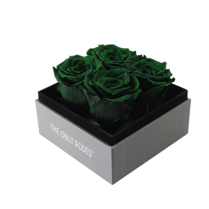 Dark Green Preserved Roses | Small Square Classic Grey Box - The Only Roses