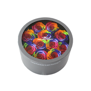 Rainbow Preserved Roses | Small Round Classic Grey Box