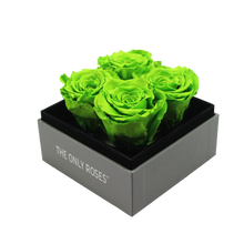Load image into Gallery viewer, Green Preserved Roses | Small Square Classic Grey Box - The Only Roses