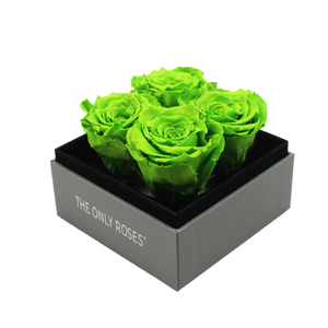 Green Preserved Roses | Small Square Classic Grey Box - The Only Roses