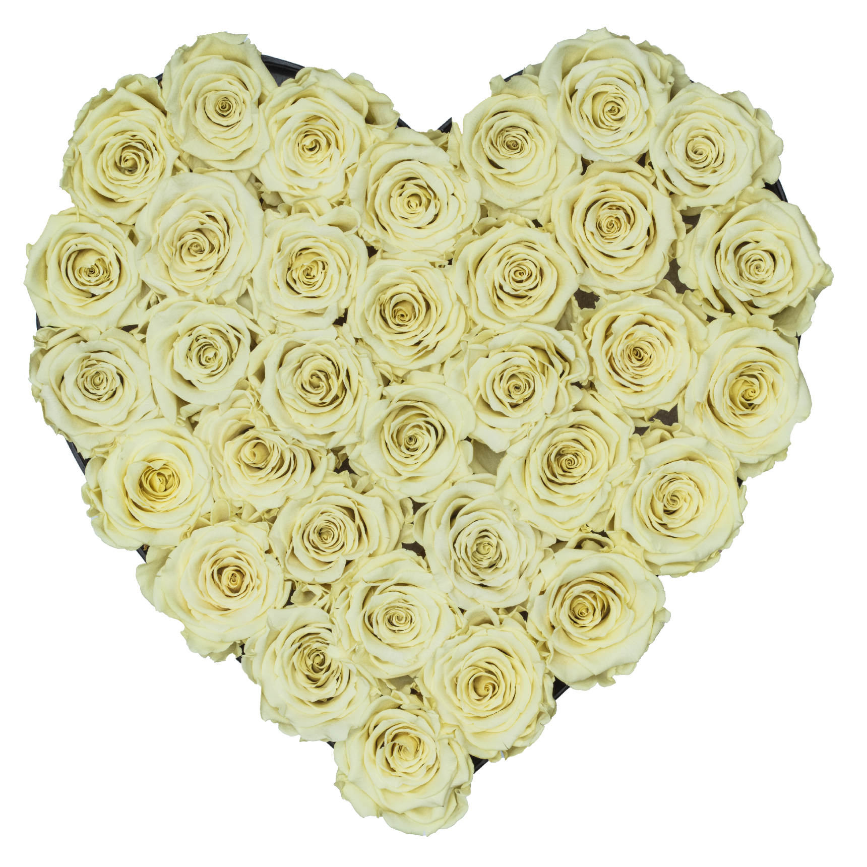 Light Yellow Preserved Roses | Heart Black Huggy Rose Box - The Only Roses
