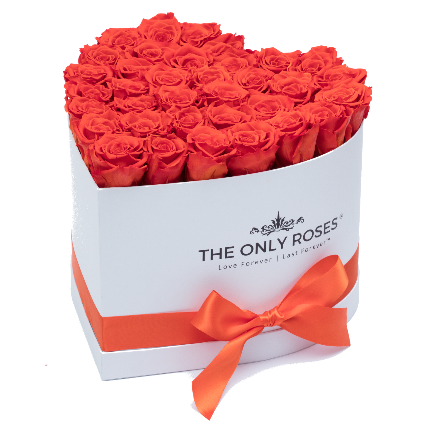 Orange Preserved Roses | Heart White Huggy Rose Box - The Only Roses