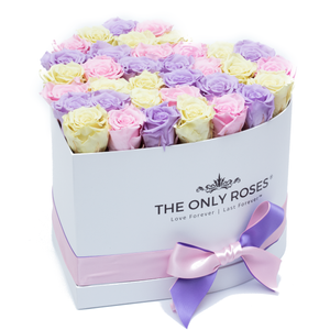 Candy Color Preserved Roses | Heart White Huggy Rose Box - The Only Roses