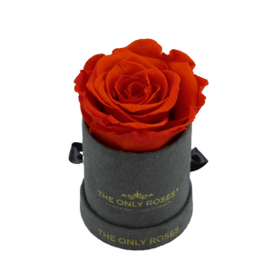 Grey Suede Petite Round Rose Hat Box | Single Preserved Rose