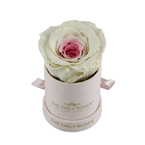 Pink Suede Petite Round Rose Hat Box | Single Preserved Rose
