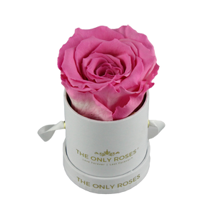 White Petite Round Rose Hat Box | Single Preserved Rose