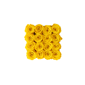 Yellow Preserved Roses | White Square Rose Hat Box