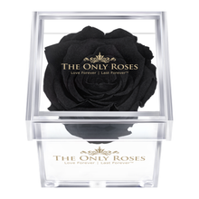 Load image into Gallery viewer, Black Preserved Rose | Petite Acrylic Rose Box