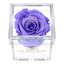 Load image into Gallery viewer, Purple Preserved Rose | Petite Acrylic Rose Box