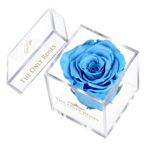 Blue Preserved Rose | Petite Acrylic Rose Box