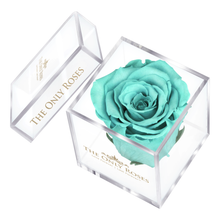 Load image into Gallery viewer, Tiffany Blue Preserved Rose | Petite Acrylic Rose Box