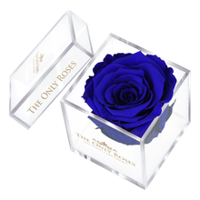 Load image into Gallery viewer, Royal Blue Preserved Rose | Petite Acrylic Rose Box