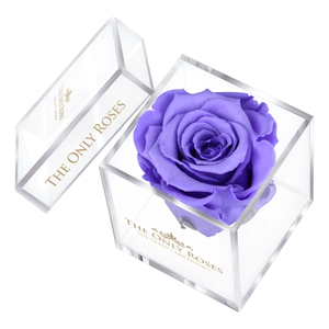 Purple Preserved Rose | Petite Acrylic Rose Box