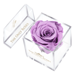 Light Purple Preserved Rose | Petite Acrylic Rose Box