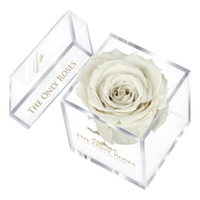 Load image into Gallery viewer, White Preserved Rose | Petite Acrylic Rose Box