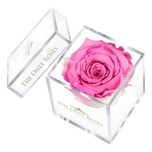 Load image into Gallery viewer, Pink Preserved Rose | Petite Acrylic Rose Box