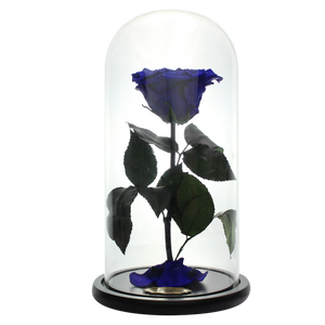 Royal Blue with Crystal Dust Heart Shape Preserved Rose | Beauty and The Beast Glass Dome - The Only Roses