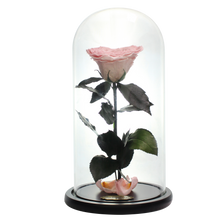 Load image into Gallery viewer, Pink with Crystal Dust Heart Shape Preserved Rose | Beauty and The Beast Glass Dome - The Only Roses
