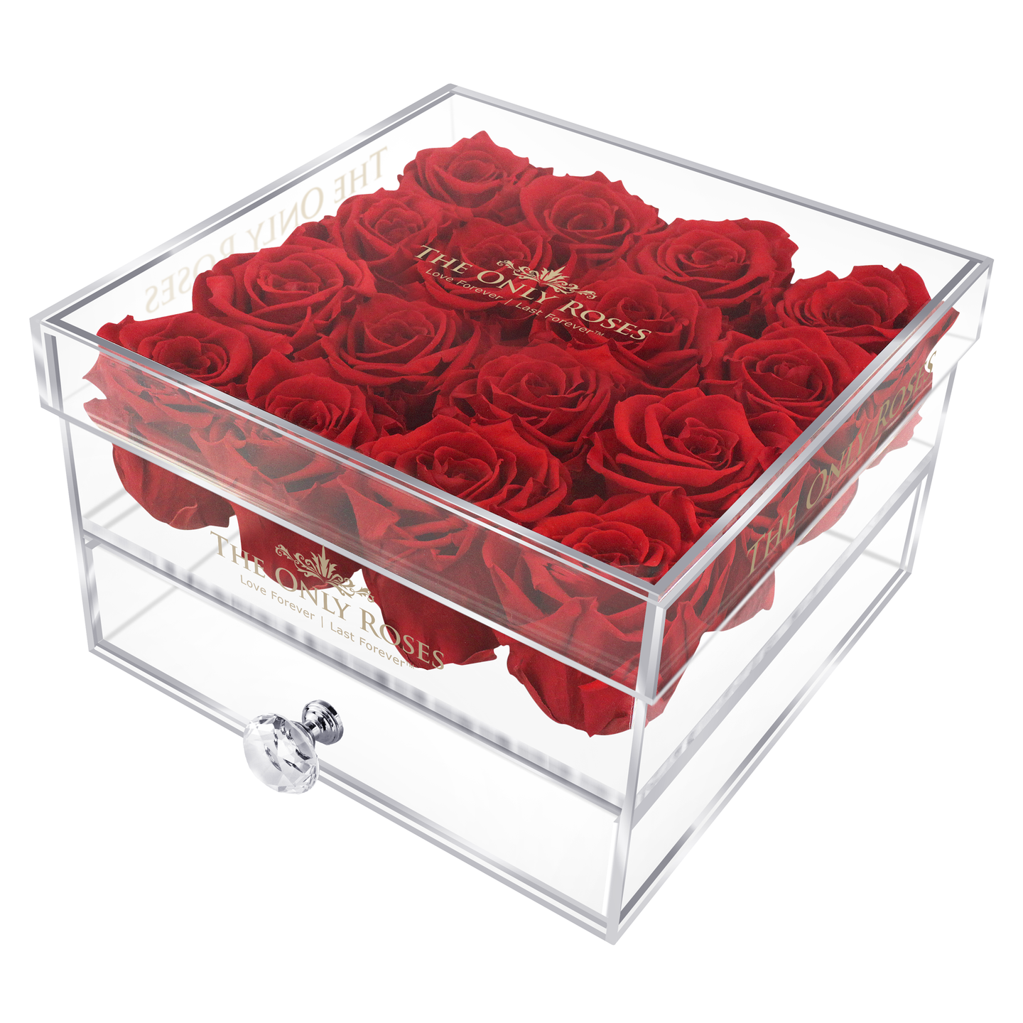 Red Color Preserved Roses | Medium Acrylic Rose Box