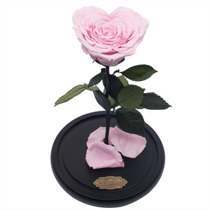 Pink with Crystal Dust Heart Shape Preserved Rose | Beauty and The Beast Glass Dome - The Only Roses