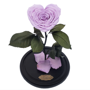 Purple with Crystal Dust Heart Shape Preserved Rose | Beauty and The Beast Glass Dome - The Only Roses