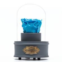 Load image into Gallery viewer, Blue Preserved Rose|The Only Regular Grey Music Globe - The Only Roses