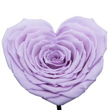Load image into Gallery viewer, Purple with Crystal Dust Heart Shape Preserved Rose | Beauty and The Beast Glass Dome - The Only Roses