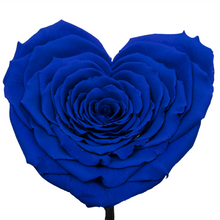 Load image into Gallery viewer, Royal Blue Heart Shape Preserved Rose | Beauty and The Beast Glass Dome - The Only Roses