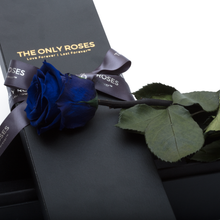 Load image into Gallery viewer, The Only | 1 Royal Blue Preserved Long Stem Rose Bouquet - The Only Roses