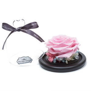 Pink Preserved Rose | Glass Dome with Heart Handle - The Only Roses