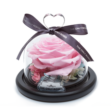 Load image into Gallery viewer, Pink Preserved Rose | Glass Dome with Heart Handle - The Only Roses