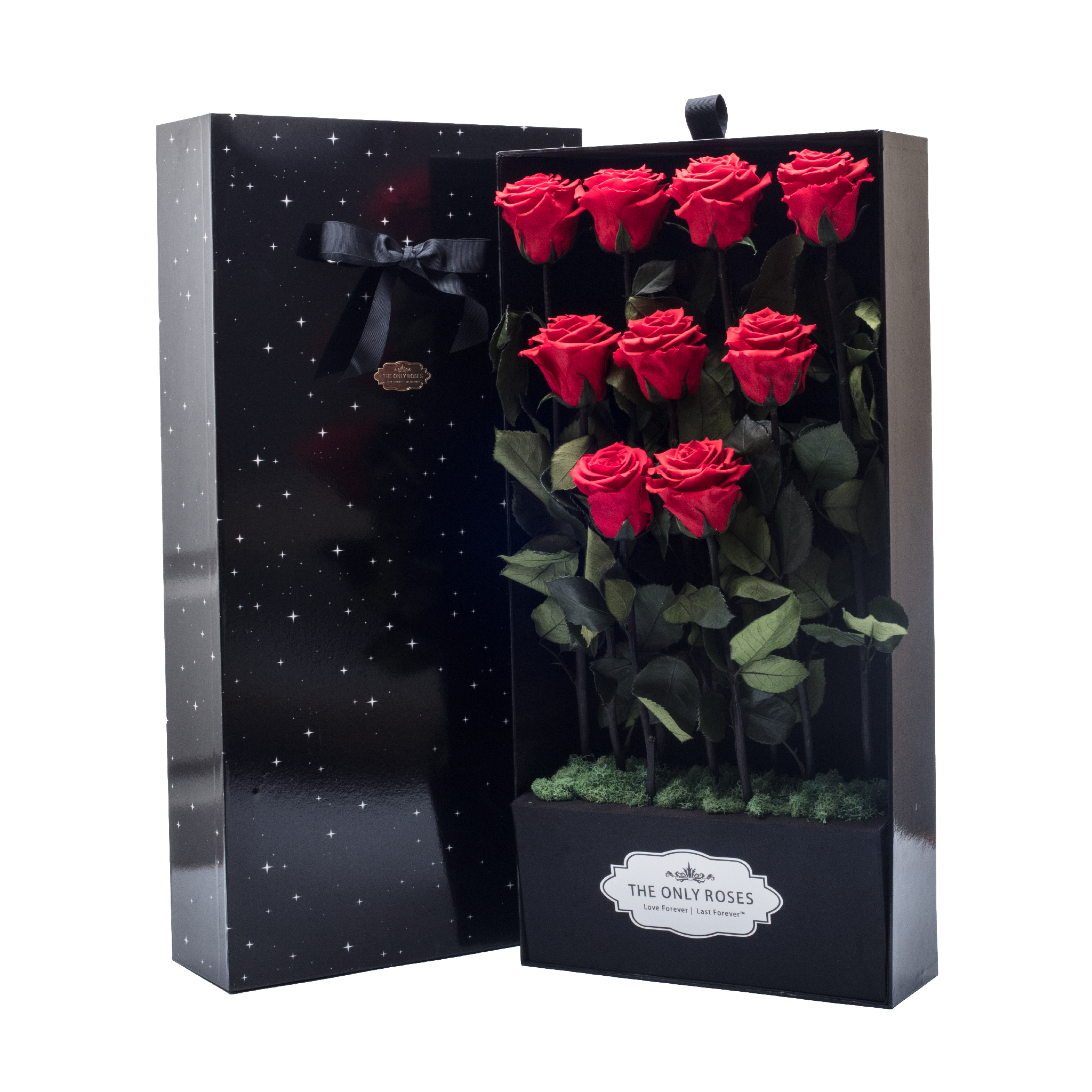 Sirius 9 Long Stem Red Preserved Roses In Black Bouquet Box