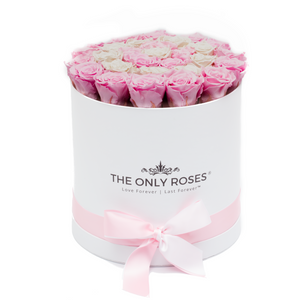 Light Pink & White Preserved Roses | Medium Round White Huggy Rose Box - The Only Roses