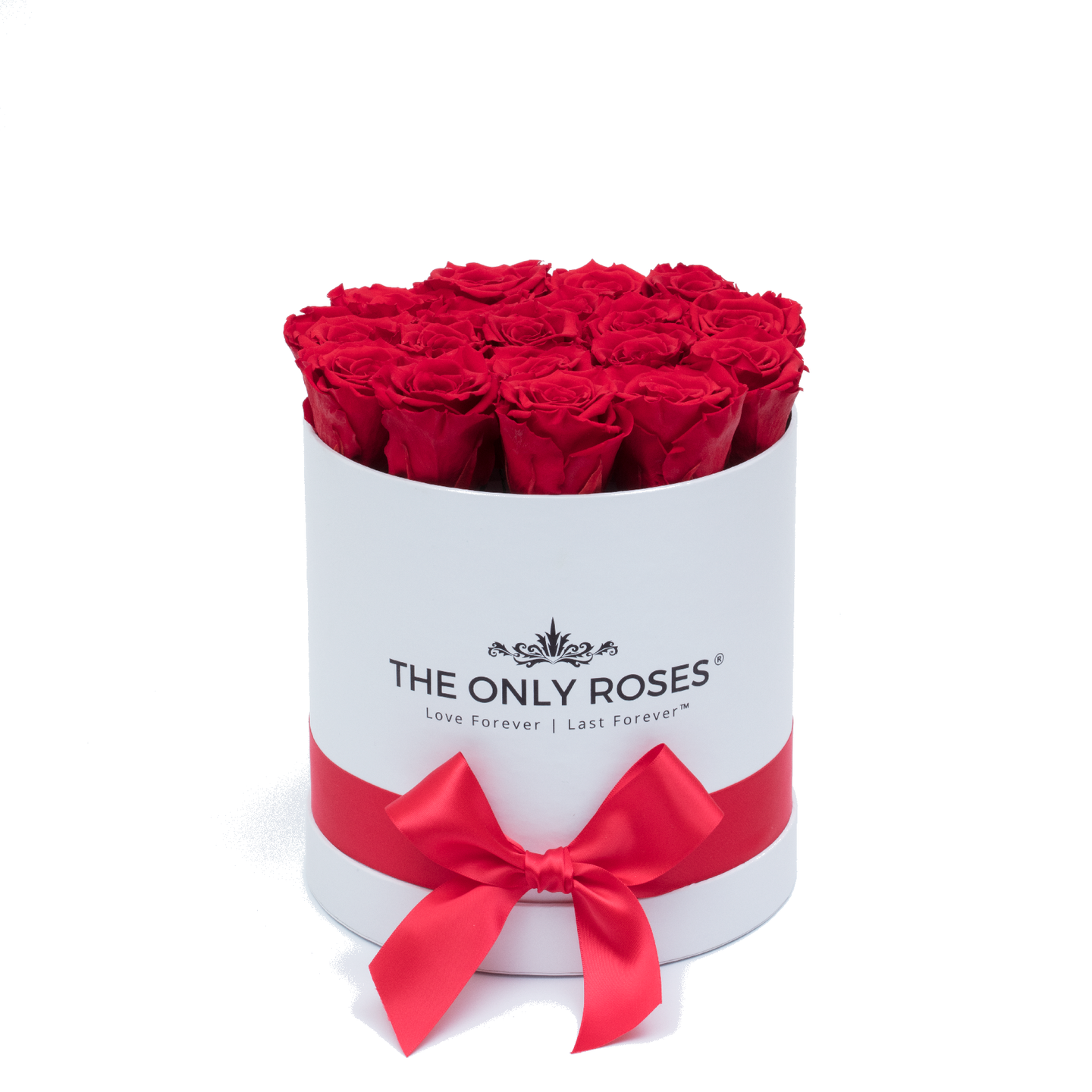 Red Preserved Roses | Small Round White Huggy Rose Box - The Only Roses
