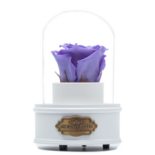 Load image into Gallery viewer, Purple Preserved Rose|The Only Regular White Music Globe - The Only Roses