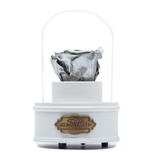 Load image into Gallery viewer, Silver Preserved Rose|The Only Regular White Music Globe - The Only Roses