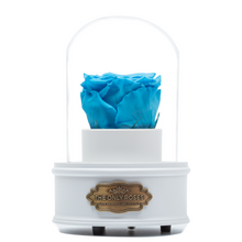 Load image into Gallery viewer, Blue Preserved Rose|The Only Regular White Music Globe - The Only Roses