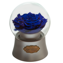 Load image into Gallery viewer, Royal Blue Preserved Rose|The Only Large Silver Music Globe - The Only Roses