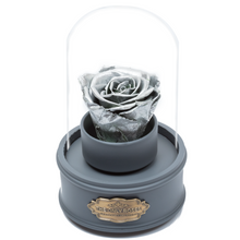 Load image into Gallery viewer, Silver Preserved Rose|The Only Regular Grey Music Globe - The Only Roses