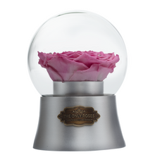 Load image into Gallery viewer, Pink Preserved Rose|The Only Large Silver Music Globe - The Only Roses