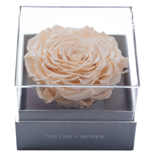 Load image into Gallery viewer, Peach Mega Preserved Rose | Crystalline Rose Box - The Only Roses