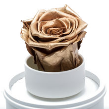 Load image into Gallery viewer, Gold Preserved Rose|The Only Regular White Music Globe - The Only Roses