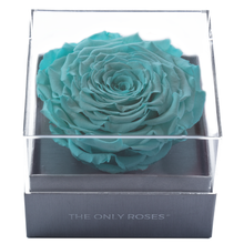 Load image into Gallery viewer, Bright Blue Mega Preserved Rose | Crystalline Rose Box - The Only Roses