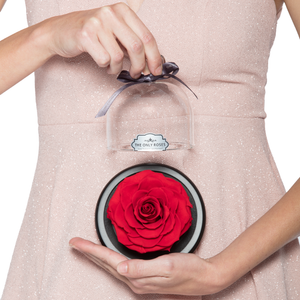 Red Preserved Rose | Glass Dome with Heart Handle - The Only Roses