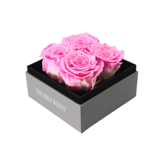 Pink Preserved Roses | Small Square Classic Grey Box - The Only Roses