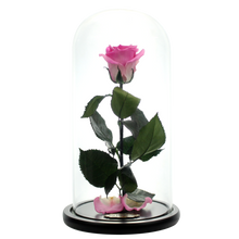 Load image into Gallery viewer, Pink Preserved Rose | Beauty and The Beast Glass Dome