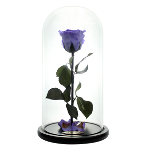 Purple Preserved Rose | Beauty and The Beast Glass Dome - The Only Roses