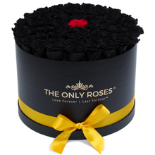 Load image into Gallery viewer, Black & Red Preserved Roses | Large Round Black Huggy Rose Box - The Only Roses
